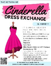Cinderella Dress Exchange