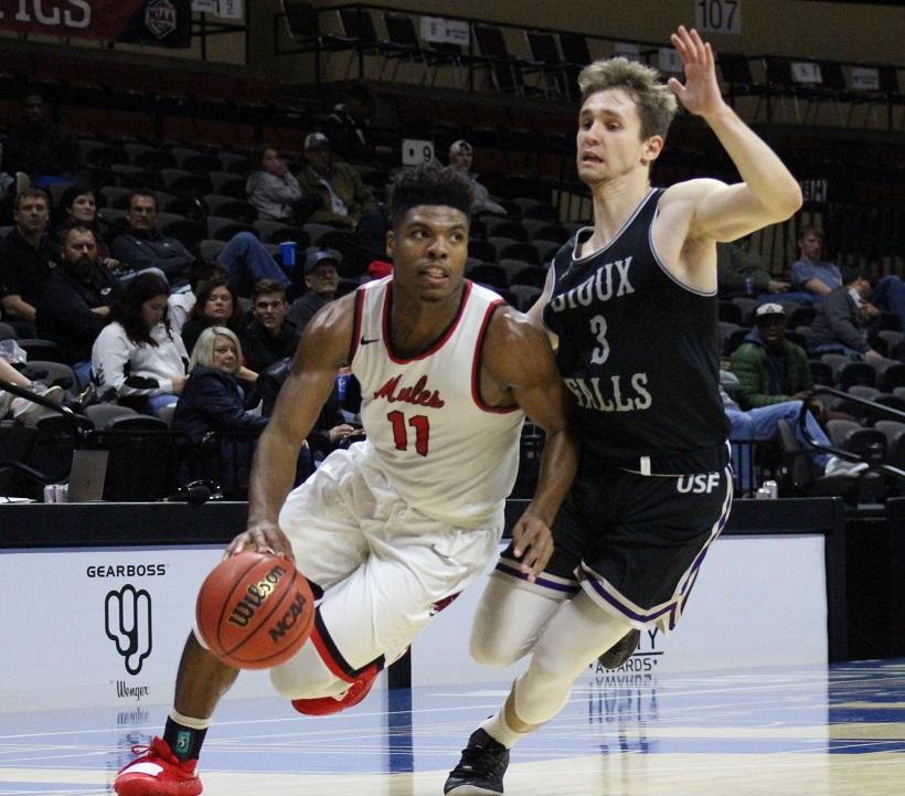 Senior guard Jafar Kinsey dribbles around a Cougars defender in the Mules 73-70 overtime loss to Sioux Falls Monday at Municipal Auditorium in Kansas City. Kinsey finished with 11 points and 12 rebounds for a double-double. (Photo by Jason Brown/Sports Editor)