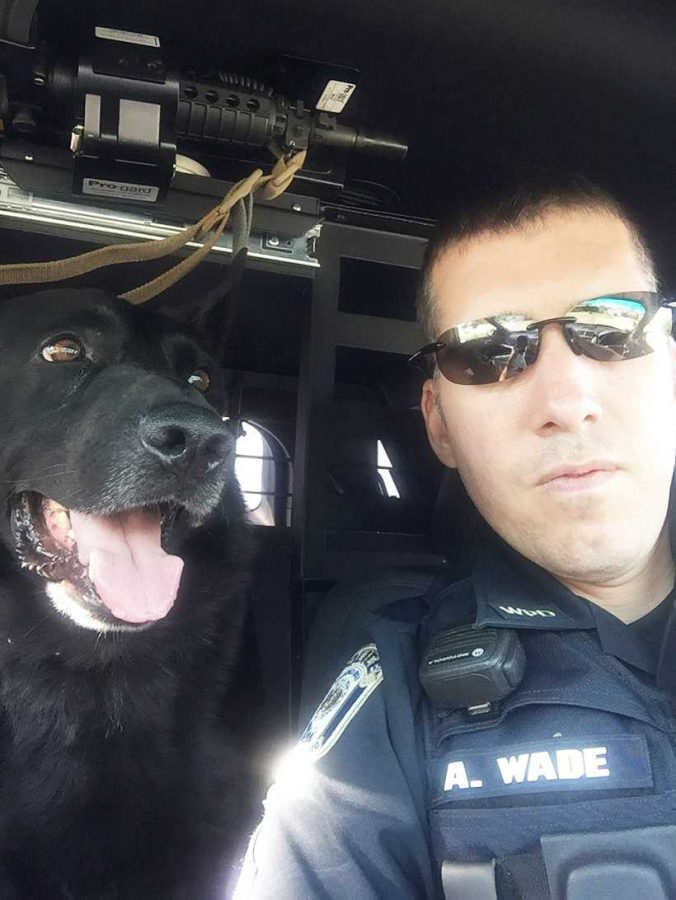 Gunner%2C+a+8-year-old+German+shepherd%2C+poses+with+handler+Sgt.+Adam+Wade+of+the+Warrensburg+Police+Department.+The+Police+Department+is+looking+to+retire+Gunner+after+he+was+diagnosed+with+degenerative+myelopathy+in+November.+%28Photo+courtesy+of+Warrensburg+Police+Department.%29