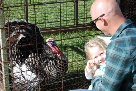 Emory Cobbs spends time with her dad, John Cobbs, while checking out the turkey in the petting zoo.